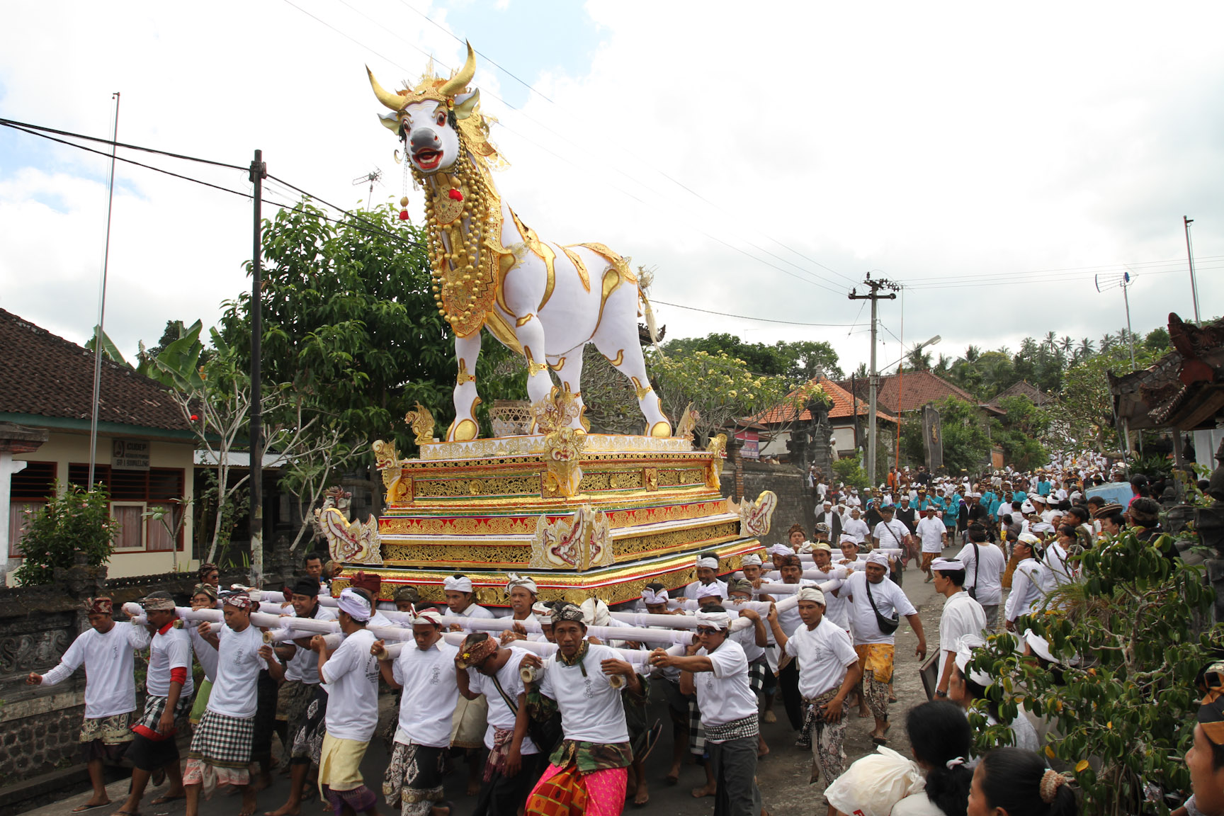The cow that will hold the body during cremation