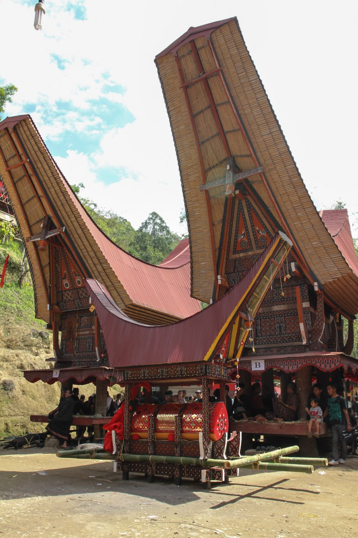 Traditional houses and coffin, Sulawesi
