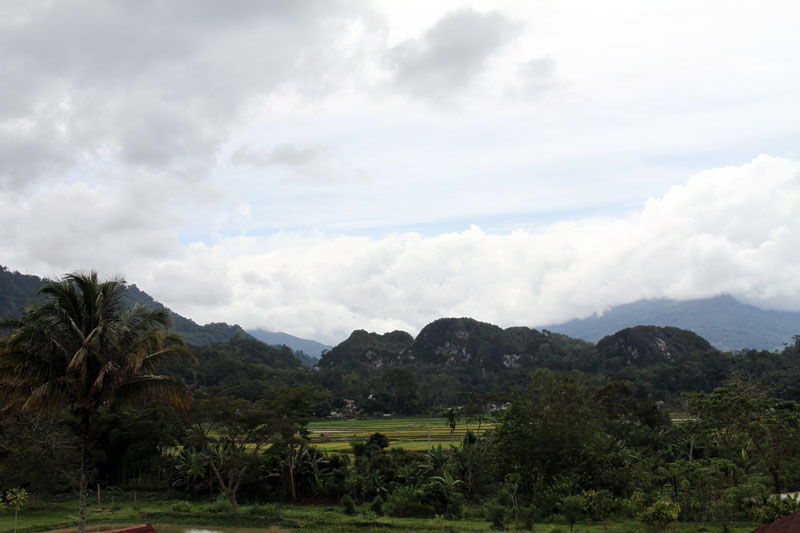 Typical Torajan landscape, clouds engulfing the mountains and ricefields in the lowlands